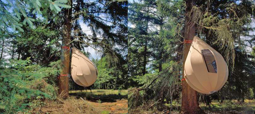 unique raindrop tree tent